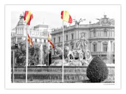 Informe 2018. Un año de exitos ©2019 Antonello Dellanotte