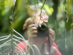 Curso de fotografía en el Real Jardín Botánico.