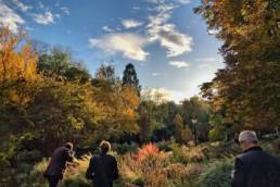Regala cursos de fotografia en el Botánico