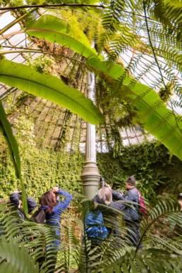 Cursos de fotografía en el Real Jardín Botánico